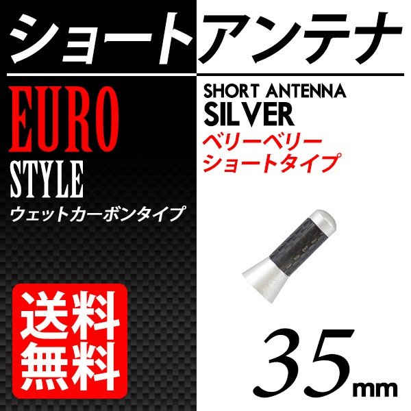 カーボン アンテナ ユーロタイプ ベリーベリーショート 35mm シルバー / 銀|lightning