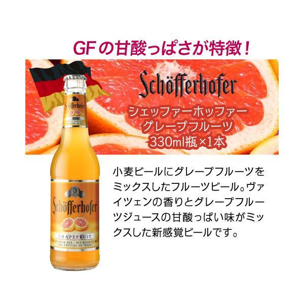 在庫処分の訳あり品 アウトレット 送料無料 輸入ビール 海外ビール フルーツビール ホワイトビール ビールセット 8本 長S|likaman|09