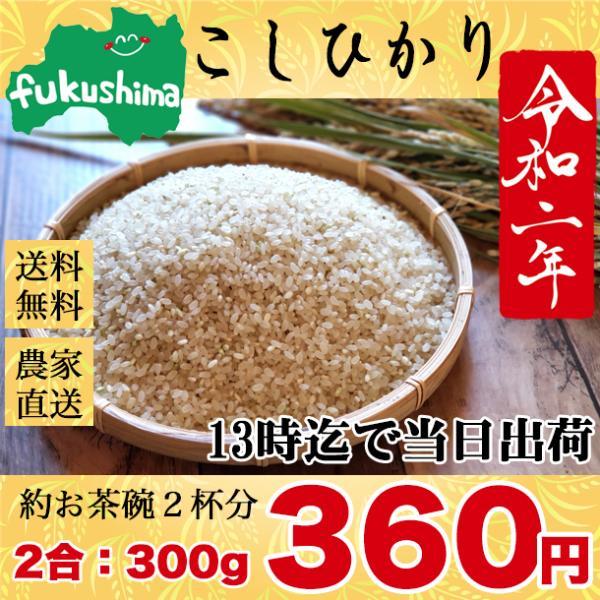 お米 お試し ポイント消化 新米 コシヒカリ 生産者直送 福島県産 こしひかり 2合 300g スズラン lilly2016