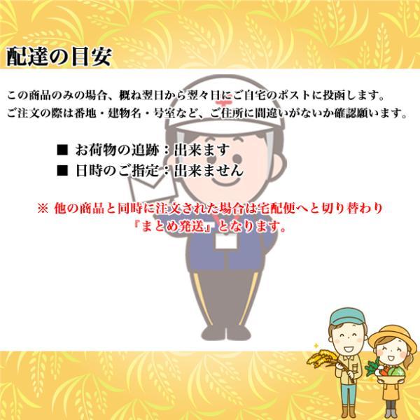 お米 お試し ポイント消化 新米 コシヒカリ 生産者直送 福島県産 こしひかり 2合 300g スズラン lilly2016 06