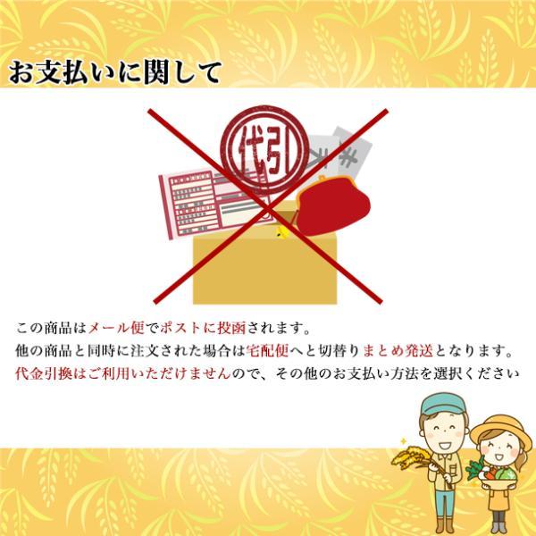 お米 お試し ポイント消化 新米 コシヒカリ 生産者直送 福島県産 こしひかり 2合 300g スズラン lilly2016 07