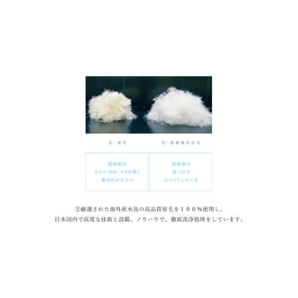 送料無料 日本洗製フード付ダウンジャケット ライトダウンジャケット メンズ アウトドア 登山 750フィルパワー パーカー 羽毛 極白 DOWN 611109|limited|12
