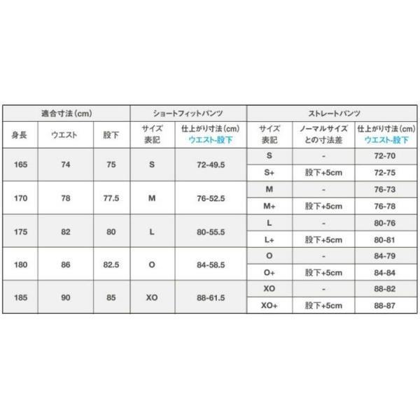 ライン加工パンツ デサント 野球 ユニフォームパンツ ストレート・ショートフィット 色:ホワイト|liner|02