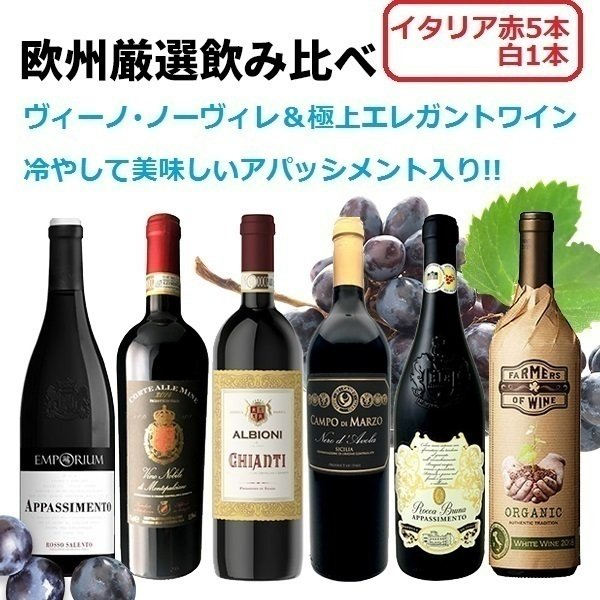 ワインセットDOCGワイン2本入り極上イタリアワインセット750ml×6本飲み比べ キャンティヴィーノノーヴィレアパッシメント