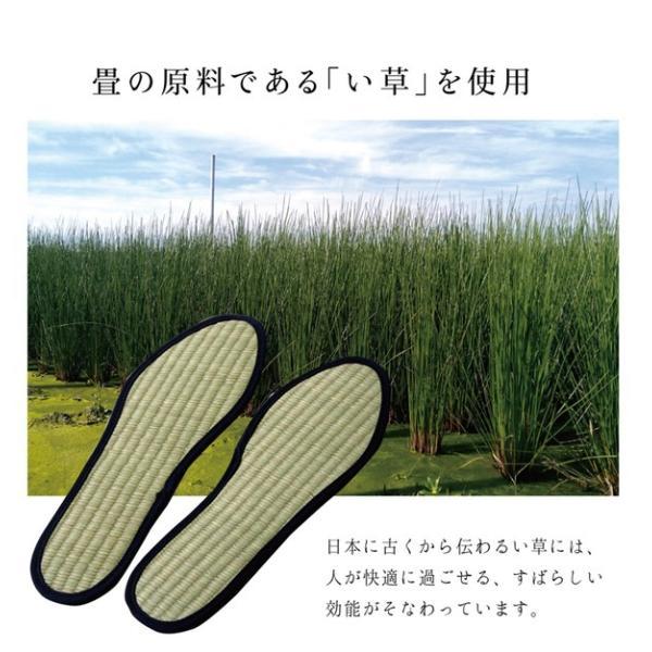 消臭&抗菌 インソール/中敷き 〔約25cm〕 ネイビー 日本製 ムレ防止 クッション性 『い草インソール』 〔靴〕