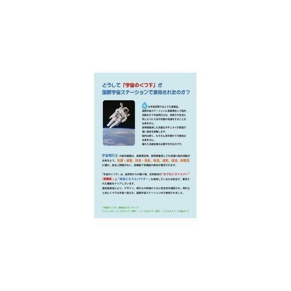 「宇宙のくつ下」シリーズ ミネラルインソール 水玉ブラック(リバーシブルタイプ) 24cm〔5枚セット〕 (靴の中敷き)