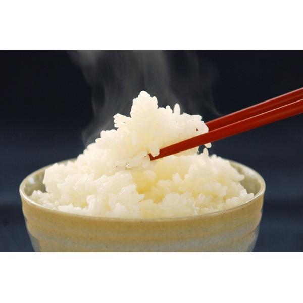 「令和元年産」「会津ブランド認定品」会津継承米 氏郷「白米」2kg|localtoglobal|02