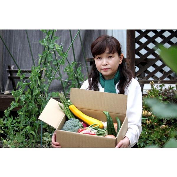 「福島県産」野菜ソムリエが厳選!! 旬の野菜詰め合わせセット(7〜8品目)「A」|localtoglobal|04