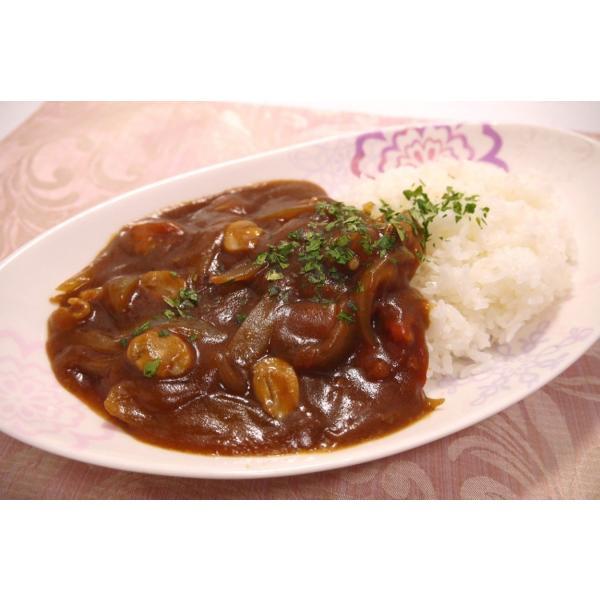 「笑いーと」米粉でとろ〜りハヤシライスルゥ(フレークタイプ (120g) 約5皿分)×2袋セット localtoglobal 03