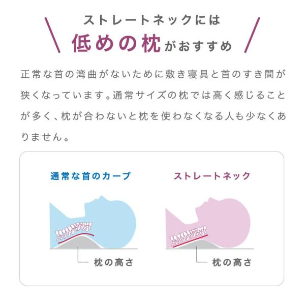 【浅田真央さん愛用】 ロフテーが追求したストレートネックにも対応する枕「ソフィットピロー」 エラスティックパイプ(やわらかめ素材) lofty 06