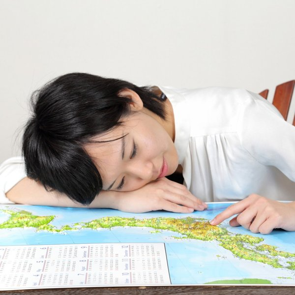 立体日本地図カレンダー2019年度版(額なし)|lohasshop-y|15