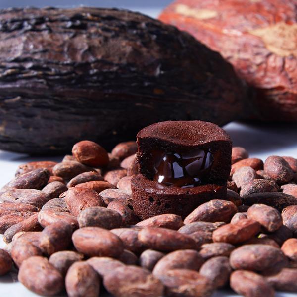 嬉しいギフト チョコレート ショコラ  スイーツギフト ルワンジュ東京 パレット フォンダンショコラ ギフト袋(付き) チョコレート ショコラ|louangetokyo|03