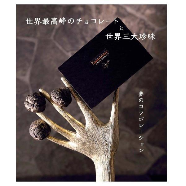 嬉しいギフト スイーツギフト  ルワンジュ東京 トリュフシュー 袋付き|louangetokyo|05