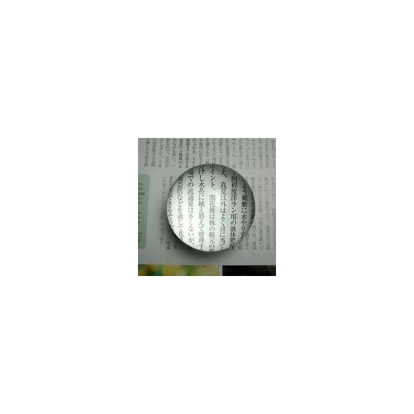 ルーペ ペーパーウェイト 文鎮 ルーペ 1880B 5倍 60mm アウトレット ホワイトガラス ルーペ 拡大鏡 虫眼鏡 アウトレット 池田レンズ|loupe