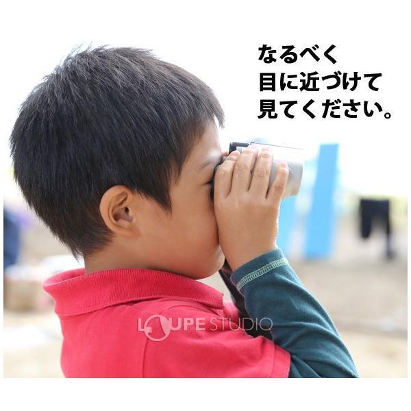 双眼鏡 10倍 ナシカ コンサート コンパクト 10×21CR-IR オペラグラス ライブ ドーム コンサート ライブ|loupe|06