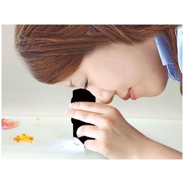 LED付ルーペ 虫眼鏡 ルーペ H ポケット型顕微鏡 LEDライト付 60〜100倍 75753 シンワ測定