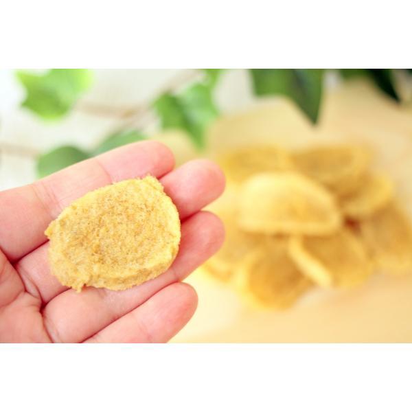 無添加 国産 犬 猫 おやつ 手作り タラチップス16g|lovelypet-oyatu|02