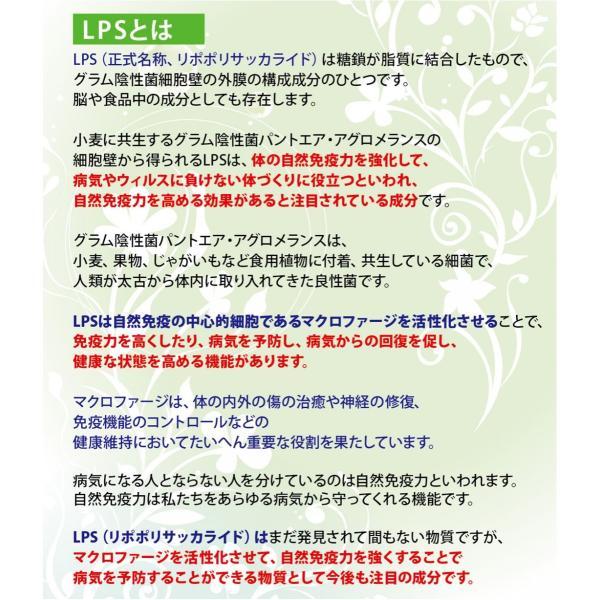 LPS (リポポリサッカライド)配合保湿クリーム「LPSバイタル クリーム HDステージ (50g)」アトピー肌 敏感肌 手荒れに☆パラベンフリー保湿剤|lps|03