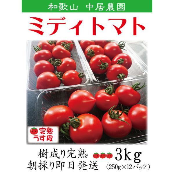 完熟 ミニトマト フルーツトマト 朝採り 即日発送 和歌山 中居農園 3kg (250g×12パック) 月 水 金曜日 収穫します