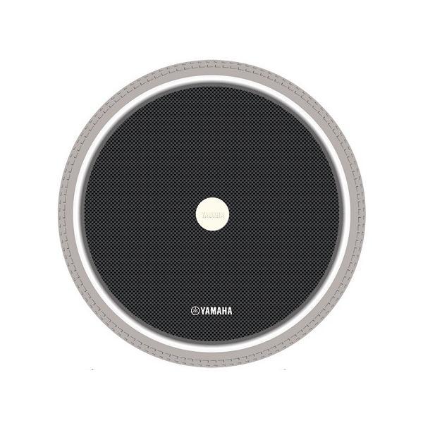 スポークカバー 手動用 /カーボンタイプ  (2枚セット)