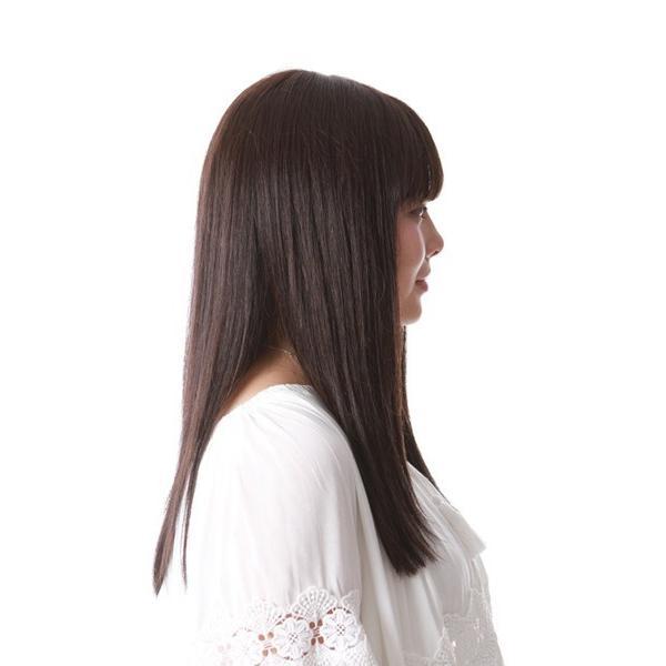 LC-25 きら髪ロングストレート(スタンダードタイプ)
