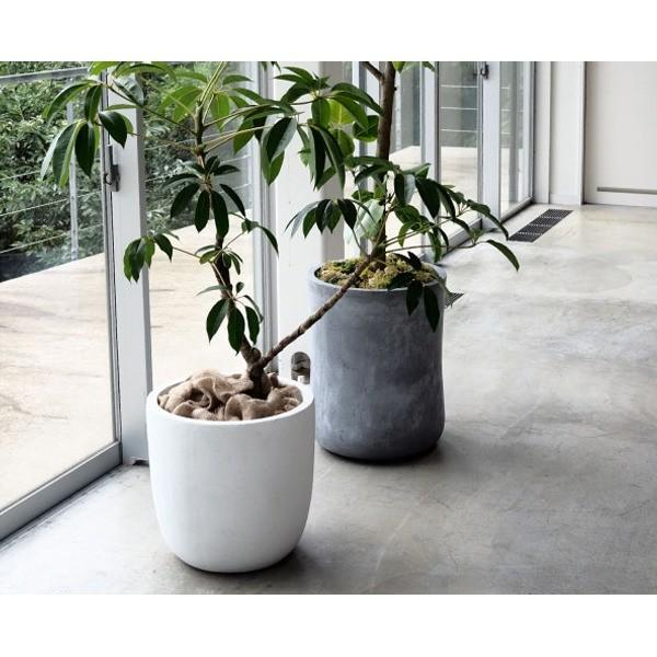 ファイバークレイ製 軽量 大型植木鉢 バスク ラウンド 43cm ホワイト|luckytail|03