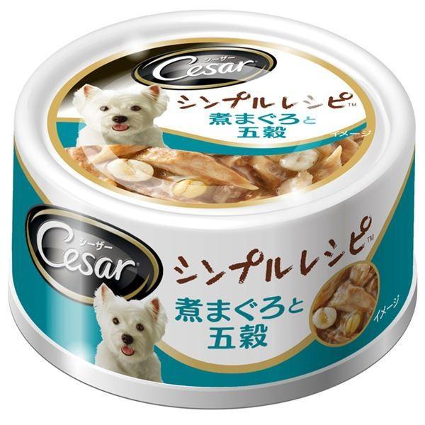 (まとめ)シーザー シンプルレシピ 煮まぐろと五穀 80g〔×48セット〕〔ペット用品・犬用フード〕|luckytail
