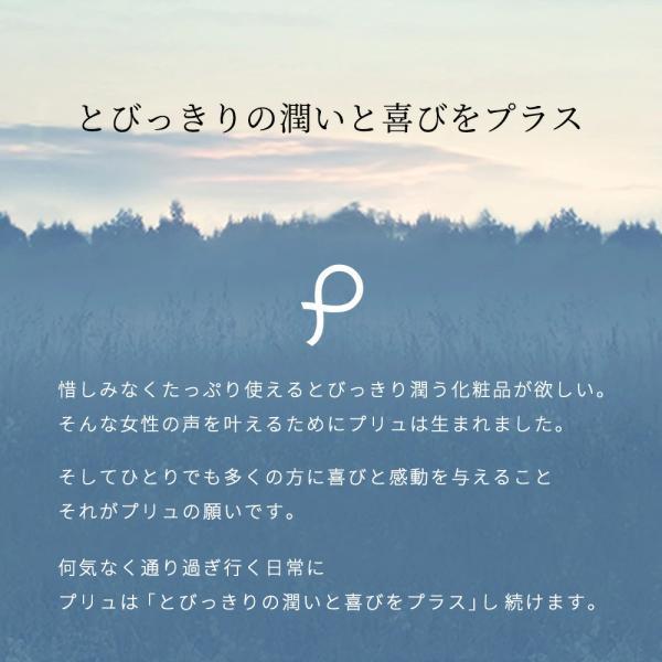 ギフト ハンドソープ ハンドクリーム | プリュ(PLuS) ハンドケア ギフトセット | プレゼント 誕生日 タオル 日本製 送料無料|luire|10