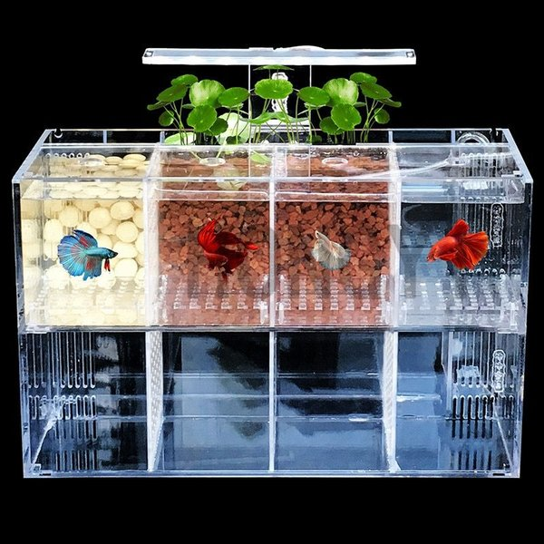 ベタ水槽おしゃれLEDライトポンプアクリルボードBetta熱帯魚魚