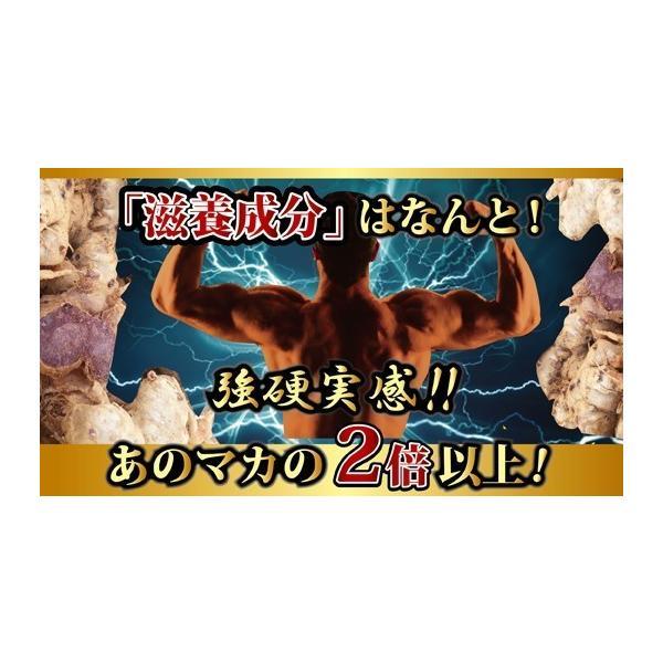 クラチャイダムEX サプリメント 30粒 お試し用 男性 滋養|m-h-s|02