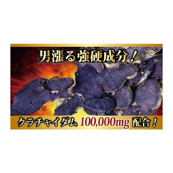 クラチャイダムEX サプリメント 30粒 お試し用 男性 滋養|m-h-s|04