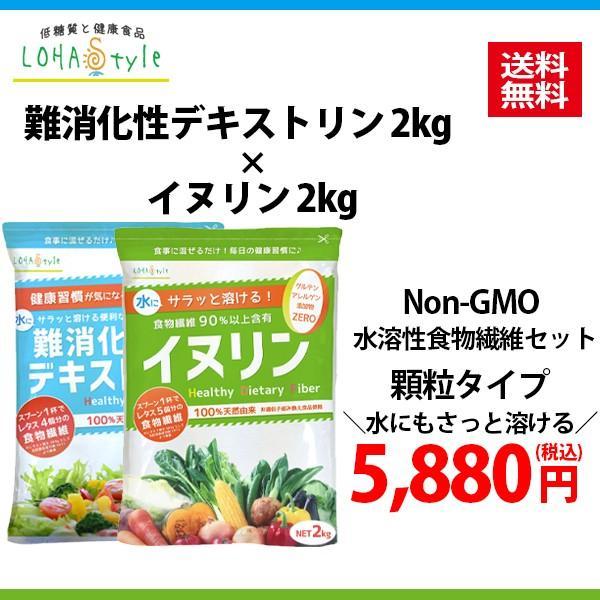 難消化性デキストリン 顆粒タイプ2kg  水溶性食物繊維 サラッと溶ける顆粒タイプ|m-h-s