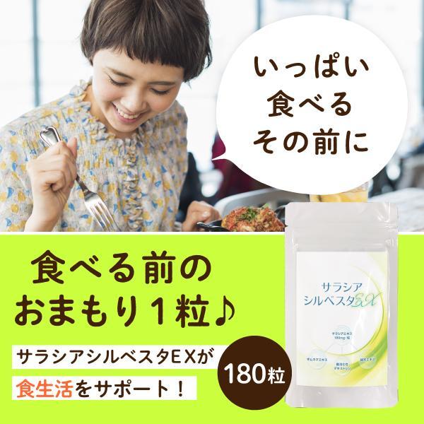 サラシア サプリメント サラシアシルベスタEX 180粒(3ヵ月分) ついつい食べ過ぎてしまうあなたに|m-h-s|02
