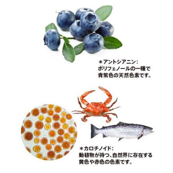 オプティバリア 3箱セット(約3ヶ月分) 目の健康が気になる方のサプリメント 栄養調整食品 m-medical-net 03