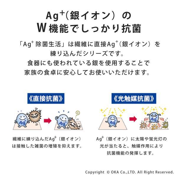 Ag+(エージープラス)除菌ふきん 2枚入り(1組セット) (除菌 におわない 銀イオン 食卓 台ふきん かや織り) オカ|m-rug|04