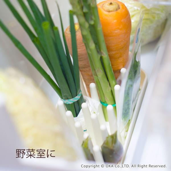 "PLYS 冷蔵庫収納 野菜スタンド ""たてる"" (ベジマジ 野菜保存 ベジタブル 野菜 長期保存 冷蔵庫 食洗機 長持ち) オカ|m-rug|02"