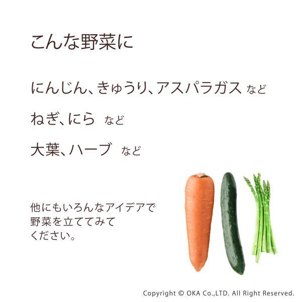 "PLYS 冷蔵庫収納 野菜スタンド ""たてる"" (ベジマジ 野菜保存 ベジタブル 野菜 長期保存 冷蔵庫 食洗機 長持ち) オカ|m-rug|05"
