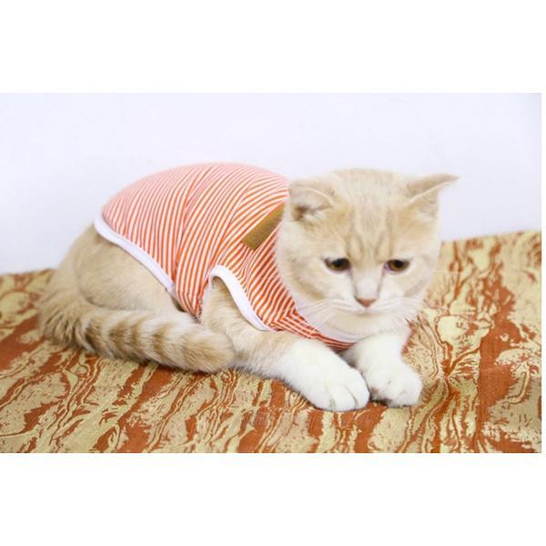 タンクトップ ストライプ ボーダー Tシャツ かわいい 抜け毛対策 猫服 ウェア 春夏 薄手|m7m|06