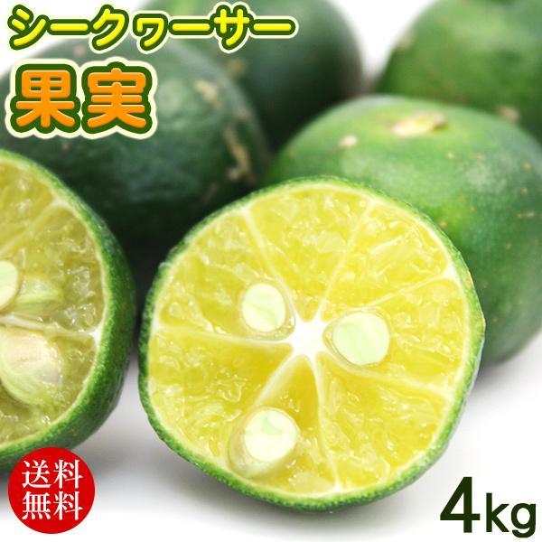 沖縄産 シークワーサー果実 4kg (送料無料) /青切りシークワーサー