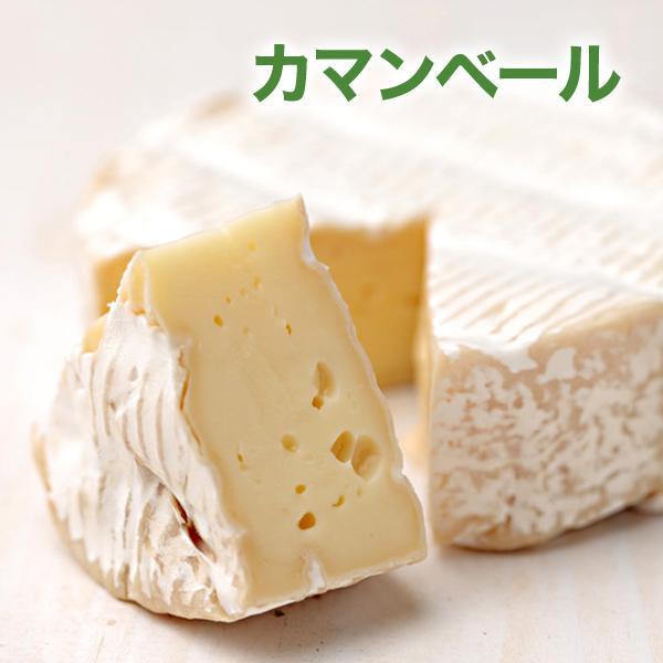 カマンベールチーズ 白カビ ワイン マリアージュ フランス産 ワインのおつまみ 肴