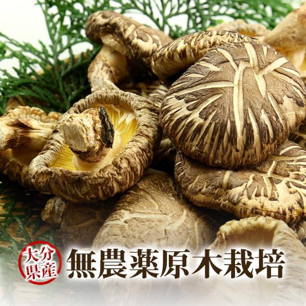 干し椎茸 乾燥椎茸 どんこ 120g 九州大分県産  国産 しいたけ シイタケ 原木栽培