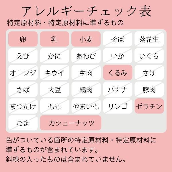 ストロベリーフィールズのムース・オ・キャラメル【5号】 made-in-japan 02