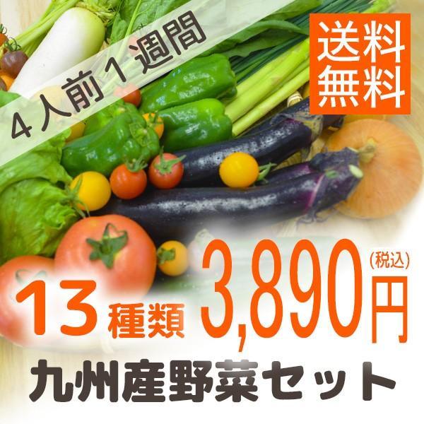 九州産野菜セット13種類セット