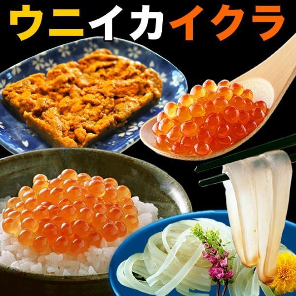 海鮮丼 約5杯分 ウニ200g イカソーメン200g イクラ100セット 簡易梱包/ダンボール/ maguro-miyako 02