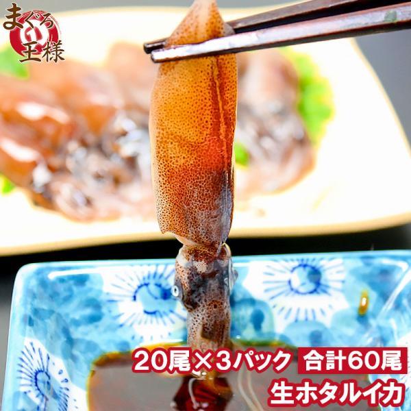 ホタルイカ ほたるいか 60尾 約150g×3パック 富山産 刺身用 いか イカ 烏賊 生ホタルイカ