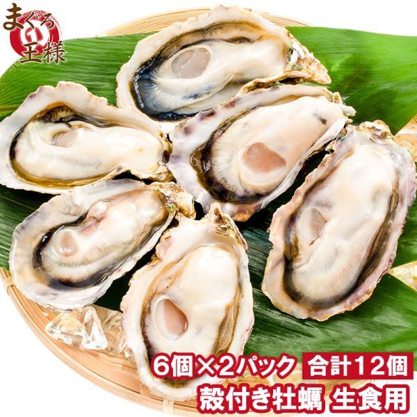 生牡蠣 殻付き 生食用カキ 生牡蠣 12個入り 冷凍殻付き牡蠣 生食用 新製法で冷凍なのに生食可能な殻付き牡蠣で濃厚な風味