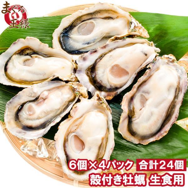 生牡蠣 殻付き 生食用カキ 生牡蠣 24個入り 冷凍殻付き牡蠣 生食用 新製法で冷凍なのに生食可能な殻付き牡蠣で濃厚な風味
