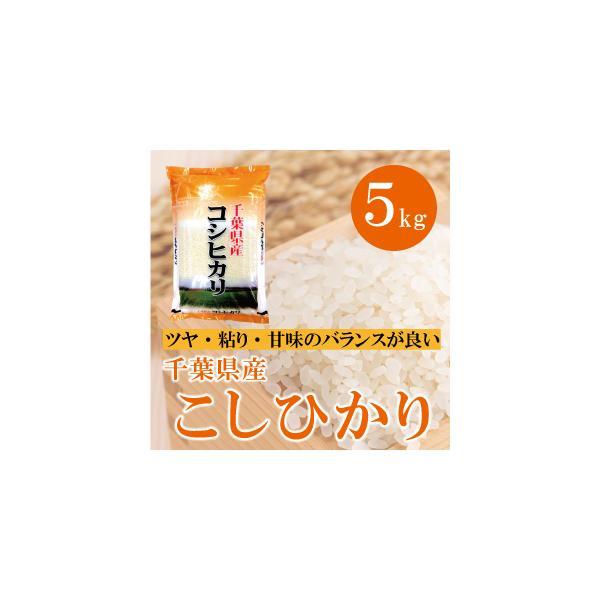 千葉県産 こしひかり 5kg バランスのとれたツヤ・粘り・甘みが特徴   豊かな自然で育まれた美味しいお米|mailife