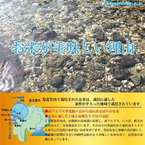 山梨県産  武川米 コシヒカリ  5kg  白米 通販 南アルプスの清流水で育った美味しいお米|mailife|03