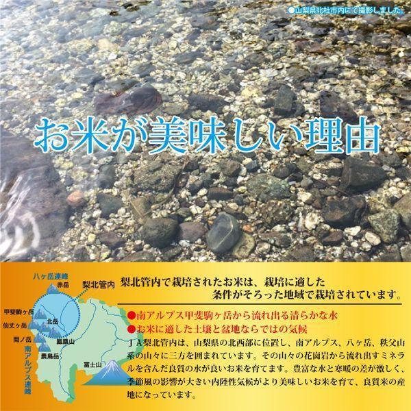 山梨県産 生産者限定  武川米 コシヒカリ 4kg  通販 山梨を代表する米職人が最高の環境で作った、ここでしか味わえない味をご堪能いただけます。|mailife|04